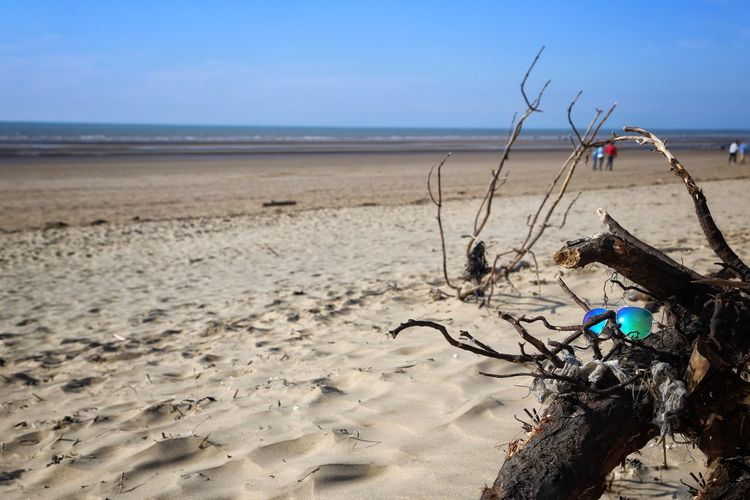 Formsby Beach Formsby Beach Liverpool Beach Land Sea Sky Water Horizon Horizon Over Water Sand Nature Scenics - Nature Day Beauty In Nature Tranquil Scene Tranquility Outdoors Sunlight Non-urban Scene Focus On Foreground Blue No People Driftwood Dead Plant Pollution