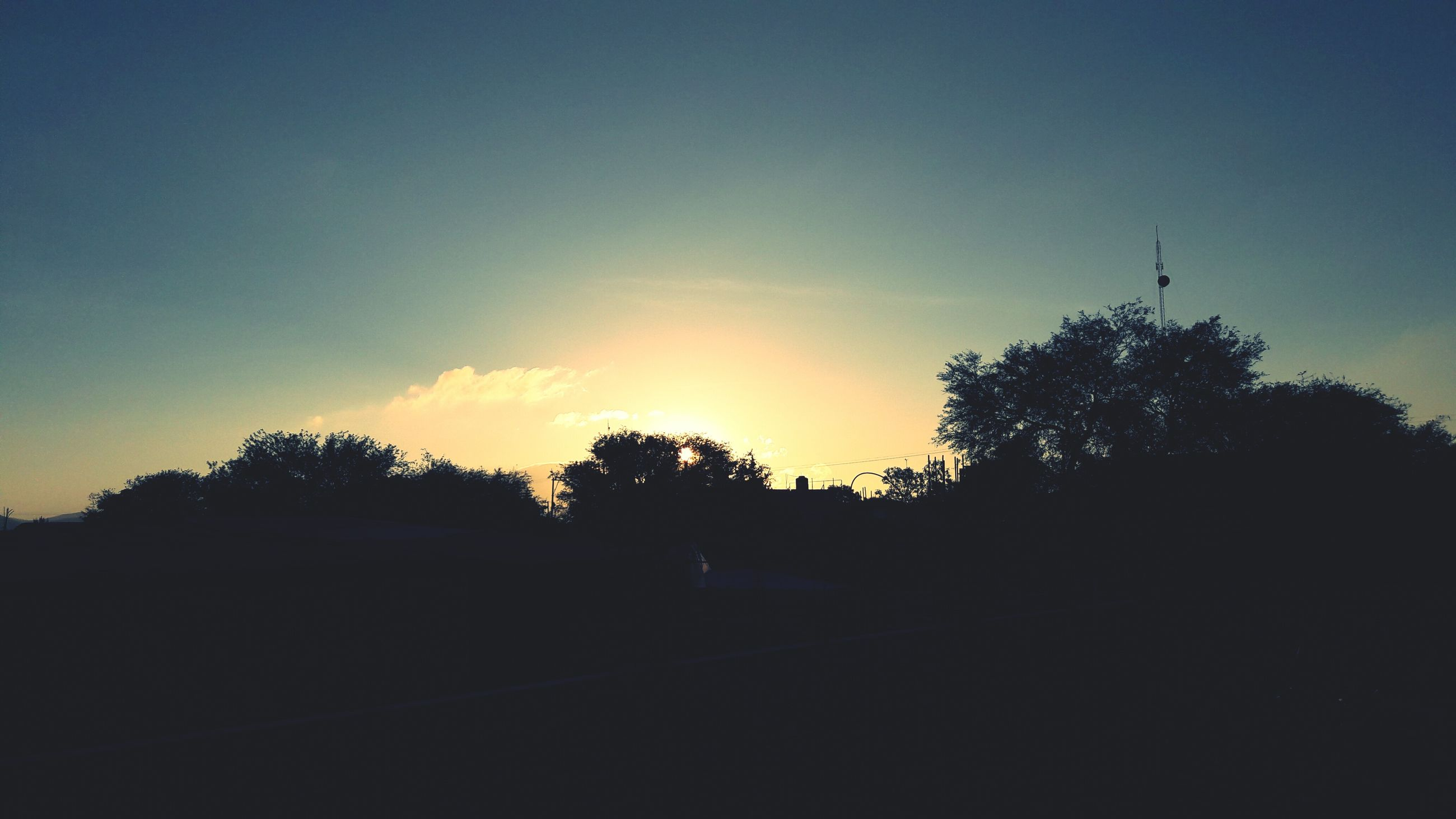 sunset, tree, silhouette, no people, outdoors, nature, sky, beauty in nature, scenics, day