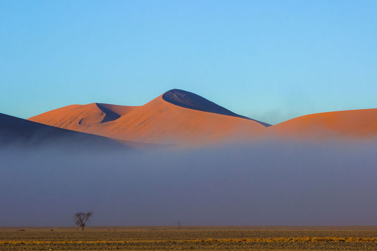 Namibia Sossusvlei Beauty In Nature Blue Clear Sky Day Landscape Nature No People Outdoors Sand Dune Scenics Sky Tranquil Scene Tranquility