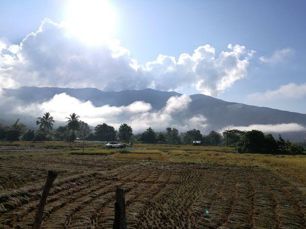 NAN Thailang Agriculture Rural Scene Landscape