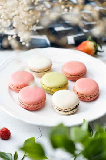 Sweet Food Food Temptation Food And Drink Sweet Indulgence Freshness Macaroon Dessert Ready-to-eat Still Life Unhealthy Eating Cake Indoors  No People Baked Choice Close-up Variation Table French Food Cupcake Holder