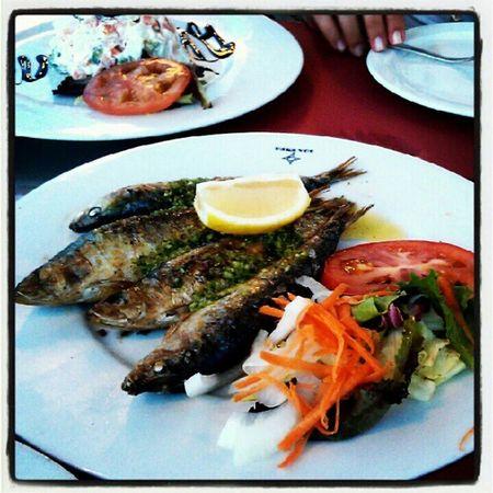 #sardinas Sardinas