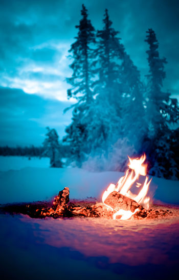 Landscape Winter Fire And Ice Fire And Flames Snow ❄ Cold Temperature Winter Wonderland Winterwonderland Wintertime Campfire Glowing Winter Trees Winterscapes Camp Camp Fire Fire And Ice Photography Snow Flame Cold Winter ❄⛄ Flames Adventure Fire And Smoke Clouds And Sky Snow Day Burning