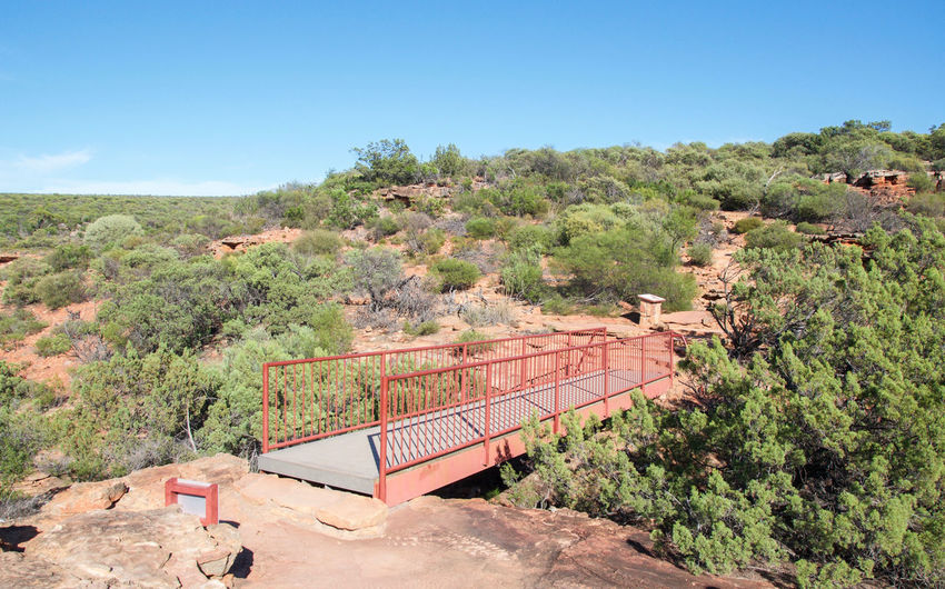 Elevated bridge at the Z-bend lookout with lush flora and red sandstone in Kalbarri, Western Australia. Bridge Bushland Eco Tourism Elevated Walkway Extreme Terrain Geology Growth Kalbarri Landscape Lookout National Park Nature Observation Point Passage Plants Railing Red Reserve Rock Sandstone Scenics Sky Travel Destinations Western Australia Z-bend