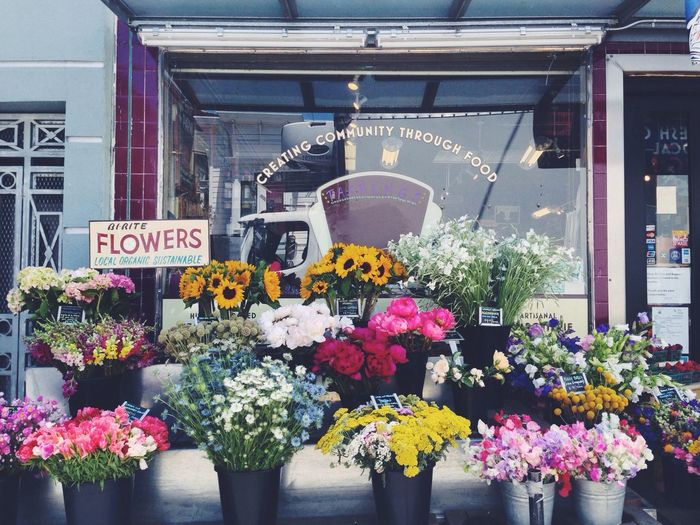 If I were filthy rich, I would buy bi-rite and use it as my own personal pantry Flowers Market