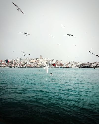 Hanging Out Popular Photos Lovely Weather Amazing Place Istanbul Naturelovers Amazing Sea Sea And Sky