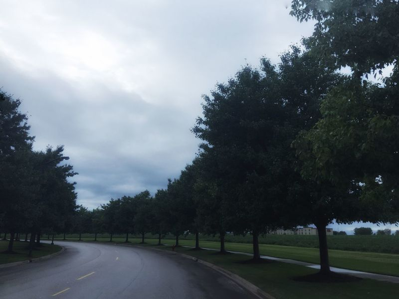 Aurora, Illinois Found On The Roll Drizzling Drizzle Daylight Day Day Photography Tree_collection  TreePorn Long Road Sky And Clouds Cloudy Sky Curvy Road My Favorite Place Beautifully Organized