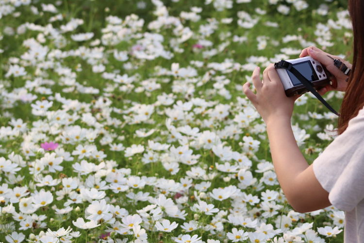 Midsection of woman photographing flowers with camera