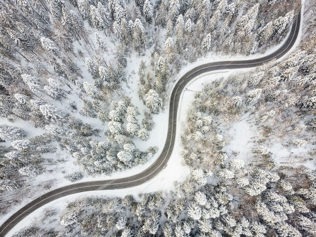 Aerial view of a road crossing a forest in winter photo of a forest with fresh snow. Drone Shot EyeEmNewHere Road Romania White Forest Winter Winter Landscape Wintertime Aerial Landscape Aerial Photography Aerial View Drone Photography Forest Fresh Snow Travel Destinations Winter Conditions