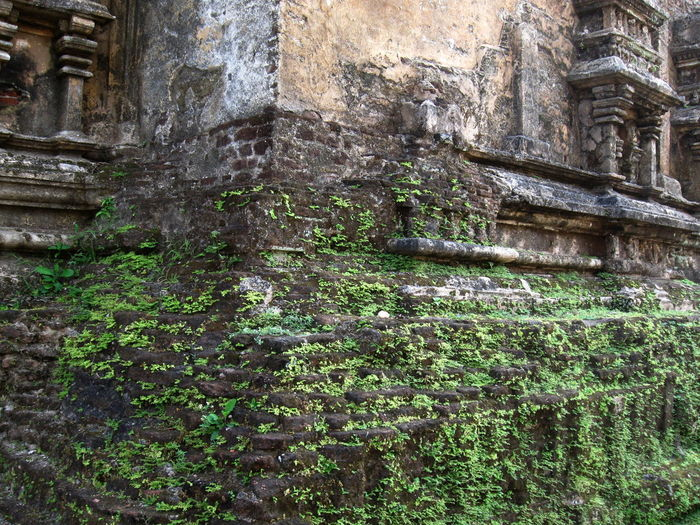 Architecture Brick Wall Building Exterior Built Structure Damaged Day Grass History No People Old Old Ruin Outdoors Plonnaruwa Sri Lanka Wall - Building Feature