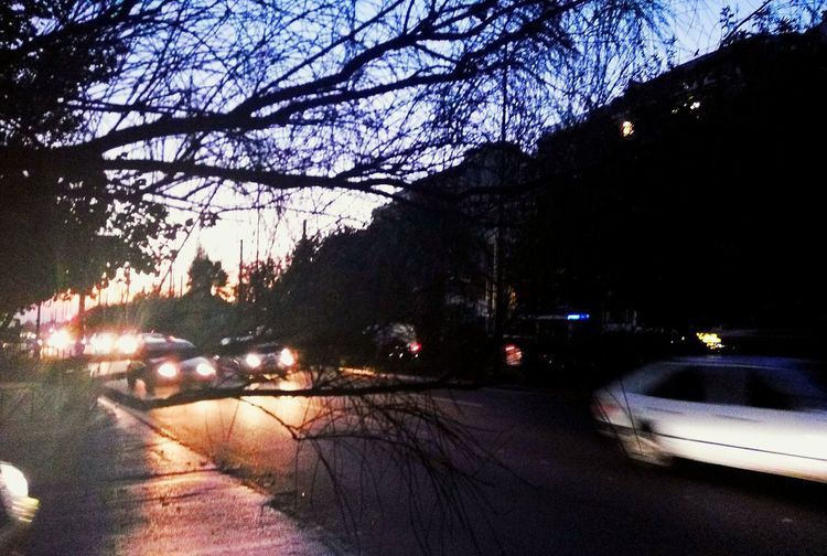Transportation Car Tree Land Vehicle Mode Of Transport Car Interior Road Windshield Vehicle Interior No People Wet Sky Nature Outdoors Close-up Water Day Streetphotography City Athens City Athens Athena Athensvibe Athens Street Photography