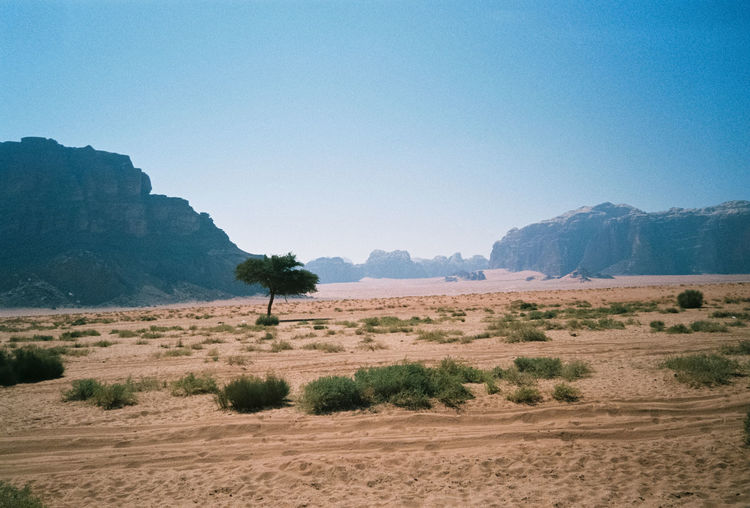 Agriculture Analogue Photography Arid Climate Beauty In Nature Blue Clear Sky Copy Space Field Jordan Landscape Mountain Mountain Range Nature No People Non-urban Scene Outdoors Remote Rural Scene Scenics Solitude Tranquil Scene Tranquility Travel Travel Destinations Traveling