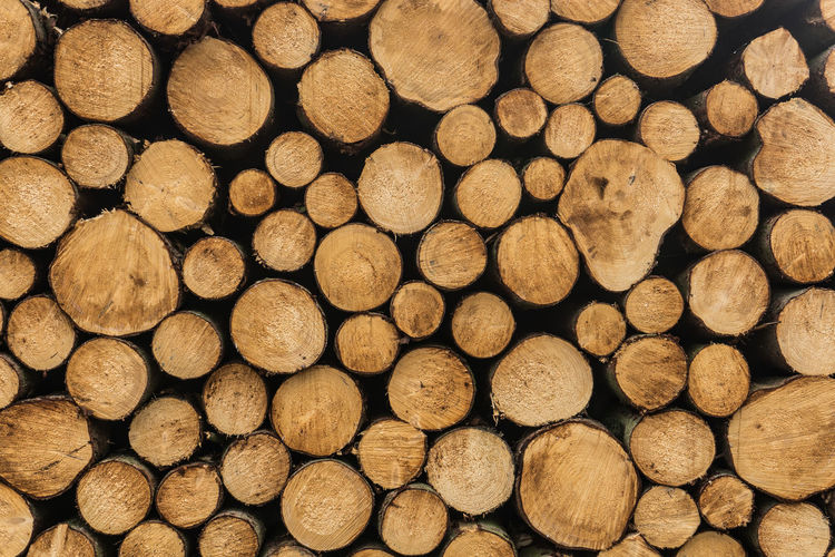 horizontal wood staples - background Horizontal Abundance Backgrounds Brown Firewood Full Frame Heap Large Group Of Objects Log Stack Staples Timber Tree Wood Wood - Material Woodpile