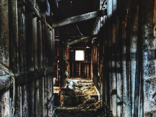 Abandoned Indoors  Bad Condition Run-down Damaged Architecture Built Structure Old Wood Old Barn Rotting Abandoned Barn Barn Interior See The Light