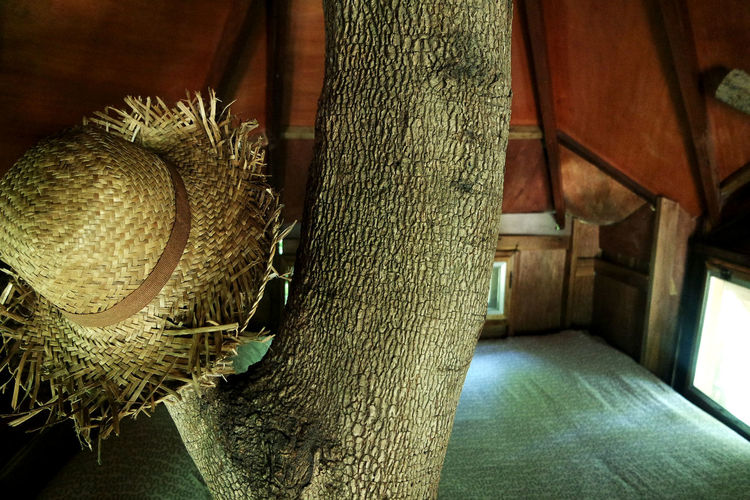 Bed Close-up Day Hat Home Indoors  No People Resort Tree Tree Trunk Treehouse Vacation