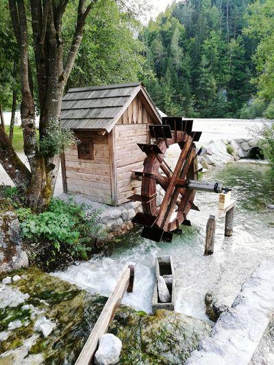 Tree Water Watermill Water Wheel Architecture