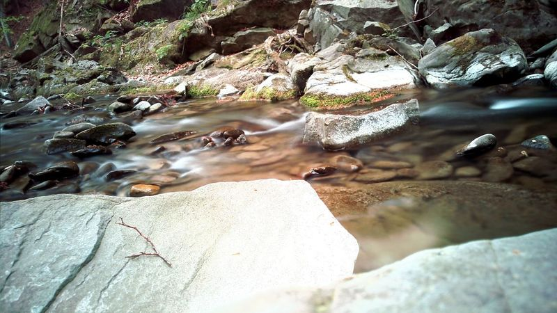 The KIOMI Collection Mobilephotography Samsungs6edge+ Longexposure Nature Forest Creekside Rocks Rocks And Water