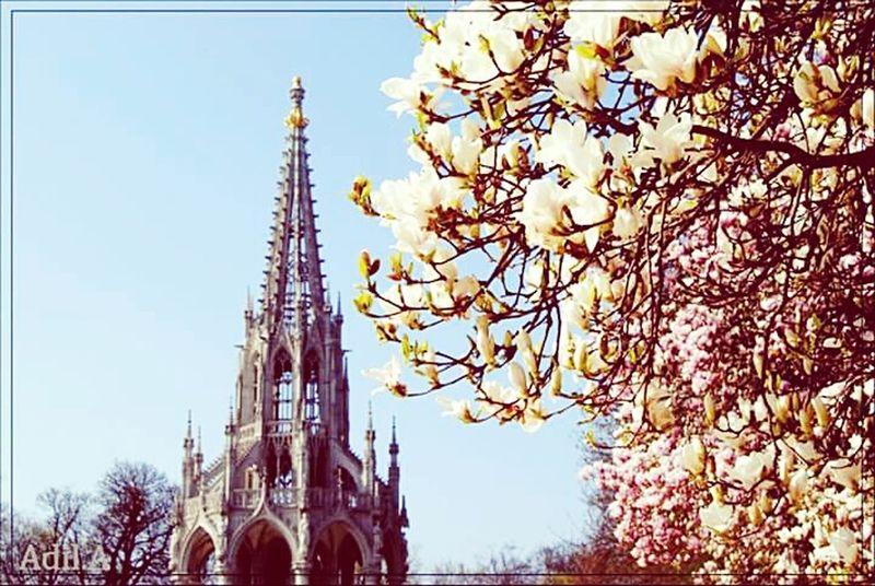 Belgium. Belgique. Belgie. Belgien. Etc. Laeken Heysel Bruxelles Printemps Floral Fleurs Enjoying Life Sunshine Photography