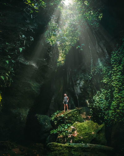 Woman standing on rock in forest