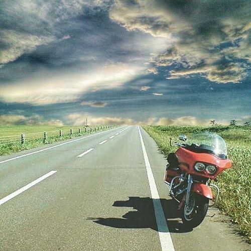Harleydavidson Harley Motorcycle HOG Ride Chopper Bagger Tour Touring Camp Hokaido 北海道 ハーレー ツーリング キャンプ 地平線 オートバイ 一直線 Horizon Clouds 雲 Storm Igers IGDaily Ig_europe ig_japan wu_japanwu_europestreetroad