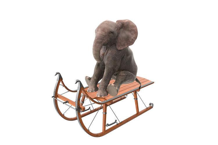 Studio Shot White Background Indoors  Cut Out Copy Space Full Length Sitting One Person Seat Childhood Lifestyles Chair Casual Clothing Representation Leisure Activity Men Wood - Material Males  Human Representation Elephant On The Sleigh Elephant Sleigh