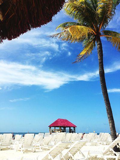 #playa #Sol