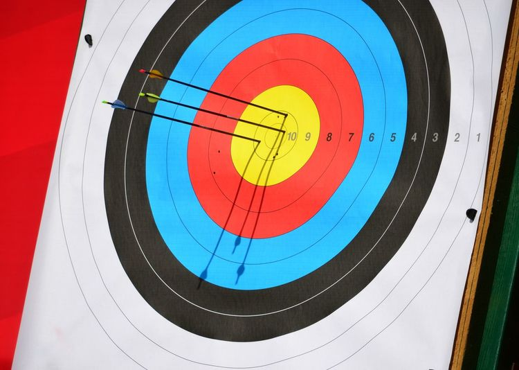 Close-up of archery target with arrows