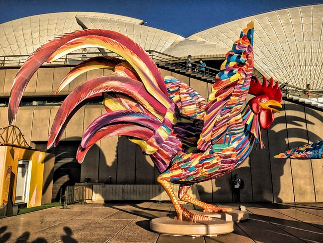 Is it the Year of the Rooster ? Sydney, Australia Lifestyles The Human Condition EyeEm From My Point Of View For My Friends That Connect Eye4photography  Walking And Taking Pics Make Love Not War Opera House