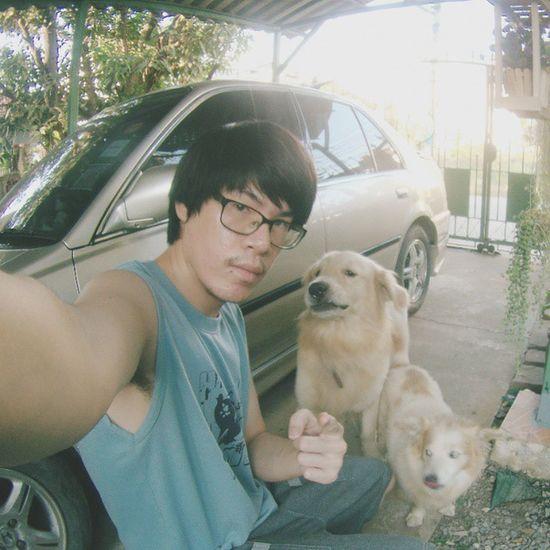จ่ะะะะ รู้แล้วจ่ะว่าไม่อยากถ่ายรูปด้วย ดูแต่ละตัวทำหน้าดิ แหม่ 😠😠😠 (Who care?) Dog Pet Pet13 Goldenretriever