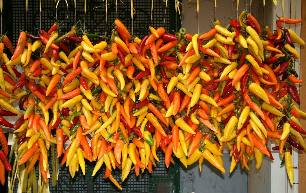 Chili Peppers Hanging For Sale At Market