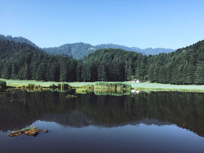 Paradise❤️ This is my first trip to khajjiar Truly fascinating experience Water Sky Scenics - Nature Reflection Plant Tranquility Beauty In Nature No People Non-urban Scene Mountain Waterfront Tranquil Scene Nature Idyllic Lake Day Tree Clear Sky Copy Space The Traveler - 2018 EyeEm Awards The Great Outdoors - 2018 EyeEm Awards