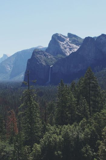 Jurassic Waterfall Yosemite National Park Mountain Pinaceae Pine Tree Mountain Range Winter Tree Nature Landscape Forest Scenics Outdoors Vacations Beauty In Nature No People Day Cold Temperature Sky