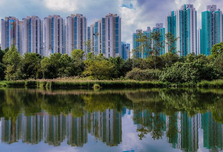 View from Wetlands HongKong on Skyscrapers Water Plant Architecture Built Structure Building Exterior Reflection Tree City No People Nature Sky Building Day Lake Waterfront Outdoors Cityscape