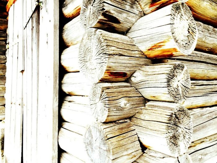 Backgrounds Timber Stack Full Frame Wood - Material Log Textured  Woodpile Forestry Industry No People Heap Lumber Industry Deforestation Close-up Day Outdoors cabin in the woods