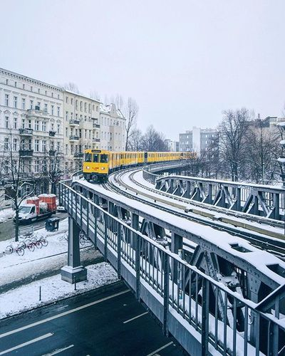 Yellow snake in white . . Berlin Visit_berlin Bvgdriveby Winterisokay Theimperfectcorbijncob Weilwirdichlieben Passionpassport Guardiancities Germanytourism Beautifuldestinations Belovedcapitals Pickmotion January