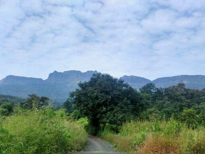 Way to trek mahuli Thane Love Nature❤