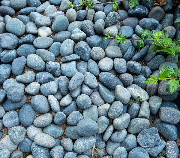 Full frame shot of pebbles outdoors