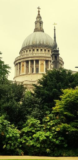 Tree Bushes St Paul's Cathedral Cannon Street London City Politics Dome Government History Architecture Building Exterior Built Structure Sky