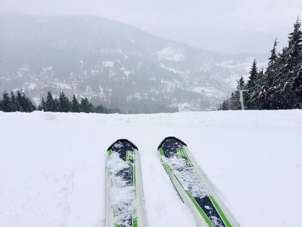 Close up of skis with snowy evergreen forest ahead Snow Winter Skis Skiing Skier Slope Mountains Resort Forest Close Up Feet Nature Sports