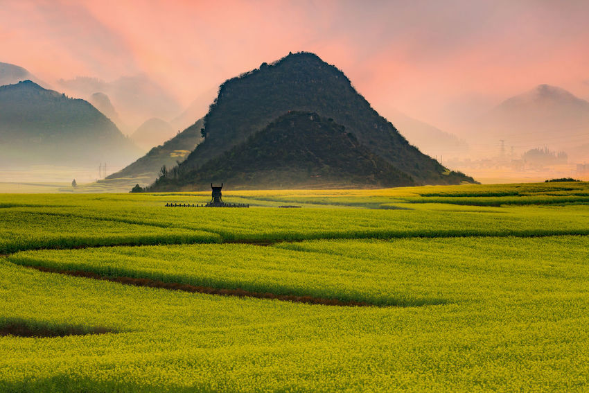 Rapeseed field in Luoping,China Luoping Tranquility Agriculture Beauty In Nature Canola Field China Day Environment Field Fog Hazy  Landscape Mountain Mountain Range Nature Outdoors Rapeseed Scenery Scenics Serene Sky Sunrise Tourism Travel Destinations Yunnan