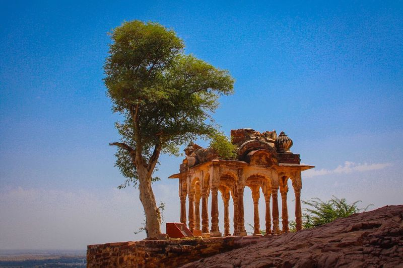 Temple in Jodhpur Sky Tree History The Past Architecture Built Structure Plant Travel Destinations Ancient Architectural Column No People Clear Sky Building Exterior Tourism Blue Outdoors Ruined Travel Old Ruin