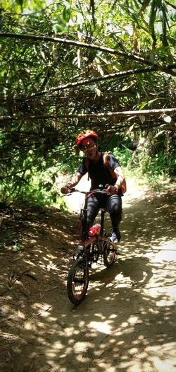 Cycling Transportation Tree Nature Lifestyles Leisure Activity Full Length Ride Riding Sunlight Jungle Trecking