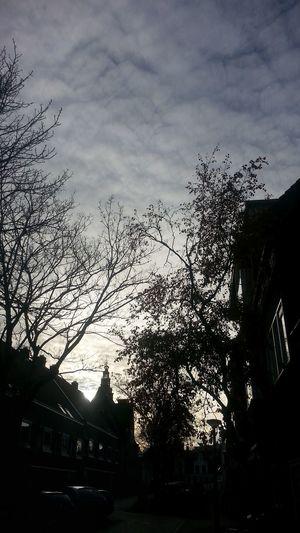 Cityscapes Sky