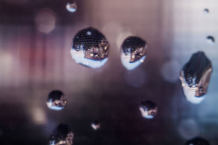 Drops Bubble Close-up Drop Nature Reflection Selective Focus Water