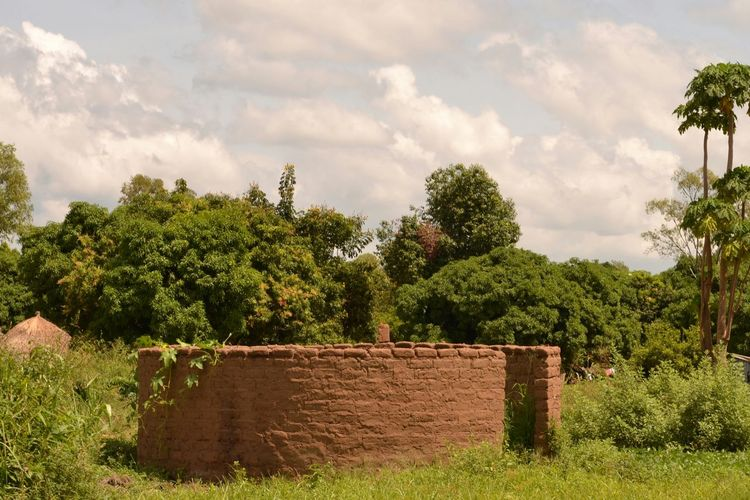 Traditional Building Unfinished Project Pawpaw Tree Trees And Bushes Beautiful Day Cloudy Sky Above, Sunny Day