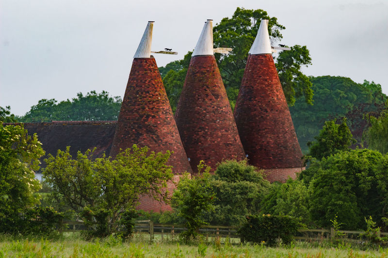 Oast House, Garden Of England, Kent, England Travel Destinations Tourism Hops Beer Brewing Drying Process Countryside Village Getty Images EyeEm Farm Vivid International Rural Scene Tranquil Scene Architecture Plant Tree No People Nature Day Sky Outdoors Green Color Hanging Growth Variation Food And Drink Food Side By Side Choice Spice Land In A Row Multi Colored Freshness