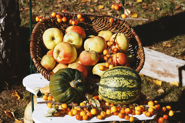 Autumn Pumpkins Rustic Thanksgiving Apple - Fruit Apples Basket Food Food And Drink Fruit Harvest Nature No People Organic Outdoors Pumpkin Still Life Sunlight Vegetable