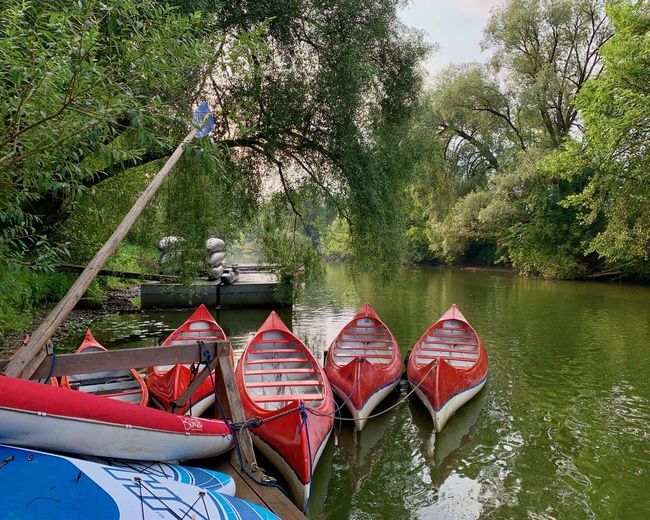 Red boats moored in lake against trees