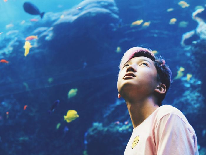 Portrait of young man swimming in aquarium