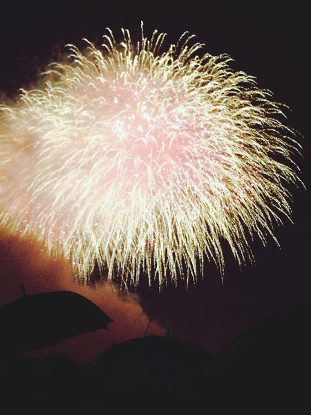 포항 불꽃 축제 !